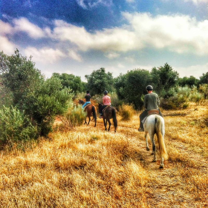 Horse riding Holiday Andalucia