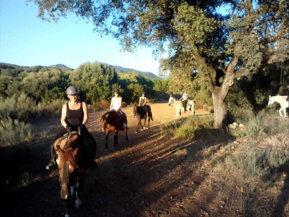 Yoga and Horse Riding Spain